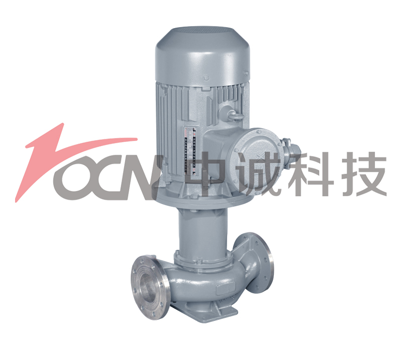 ZCCG magnetic drive pipe pump